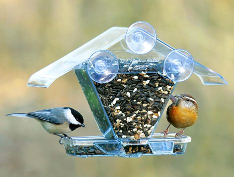 Chalet Window Mount Bird Feeder